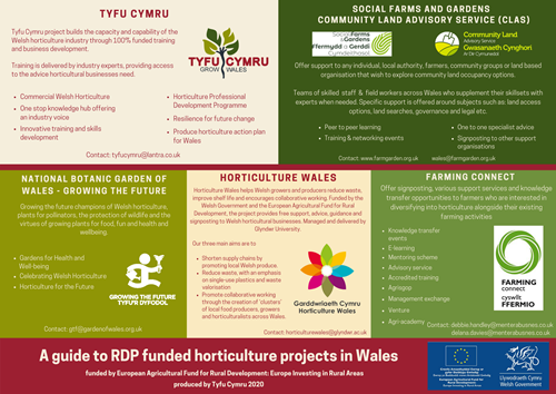 RDP Horticulture Projects in Wales